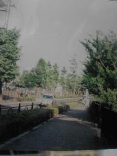 20070608122419.jpg
