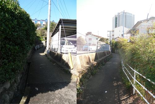 長の細道2