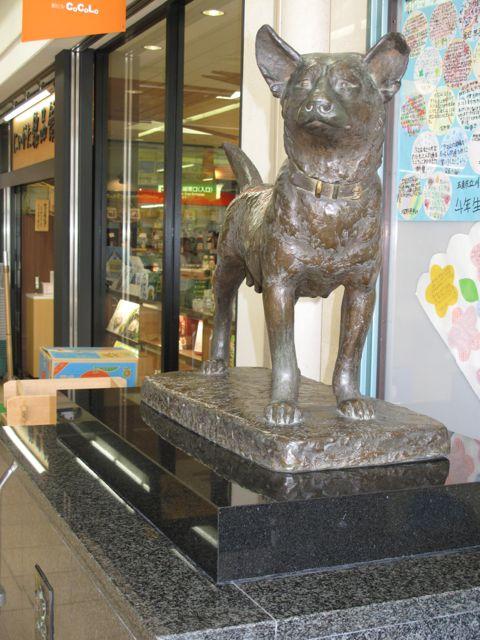 新潟駅の忠犬タマ公