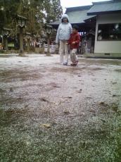 うっすらと、霰のような雪です。。