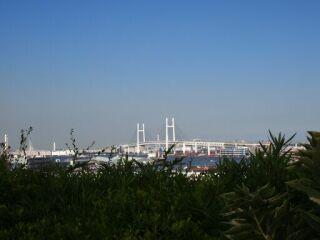 横浜港の見える丘公園ブリッジ20110907