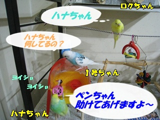 IMG231001-7.jpg