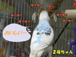 IMG231008-7.jpg