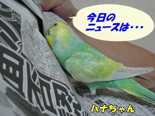 IMG231011-3.jpg