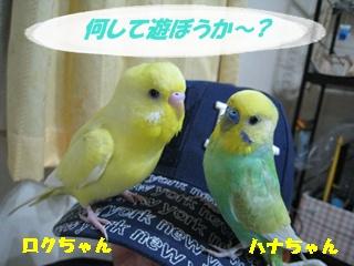 IMG231024-2.jpg