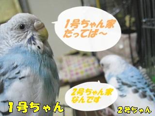 IMG231028_4.jpg