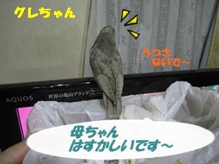 IMG231030-2.jpg