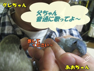IMG231102-2.jpg