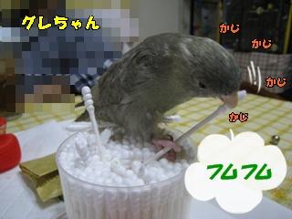 IMG231116-2.jpg