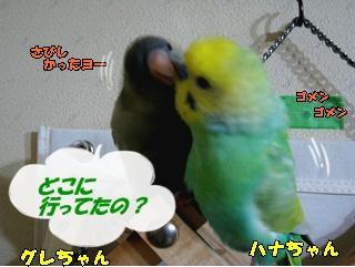 IMG240113-3.jpg