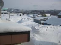 我が家の裏。雪でいっぱいです。