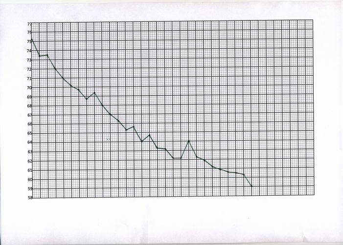 成功グラフ