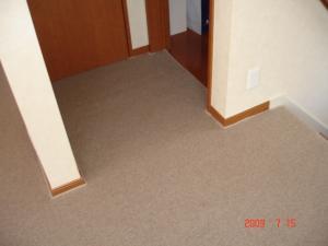 置き敷きカーペット1