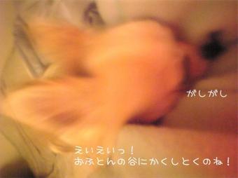20070619105953.jpg