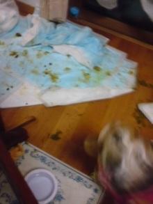 老犬2匹 介護だぞ~16歳ビーグル&13歳盲目のチワワ-110517_2132~01.jpg