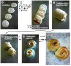 ローズパン成形