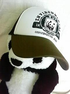 wwf帽子1