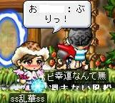 Maple0011_20081203011350.jpg