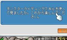 Maple0012_20081127001814.jpg