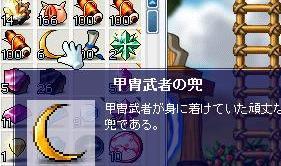 Maple0012_20081205000217.jpg