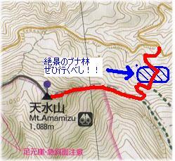 Anonomi_amamizu2.jpg