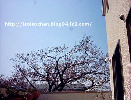 IMAGE0475.jpg