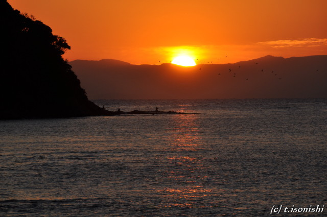夕陽(2008/12/28)
