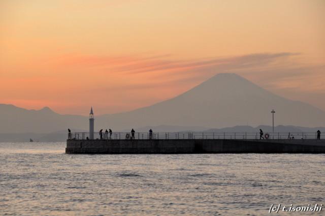 富士山 from 江の島漁港(2008/12/28)