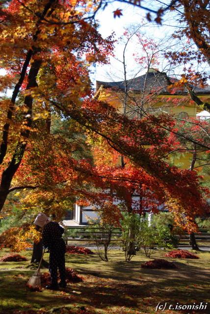 金閣寺(2008/11/26)