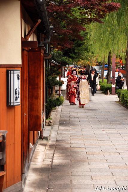 祇園(2008/11/28)