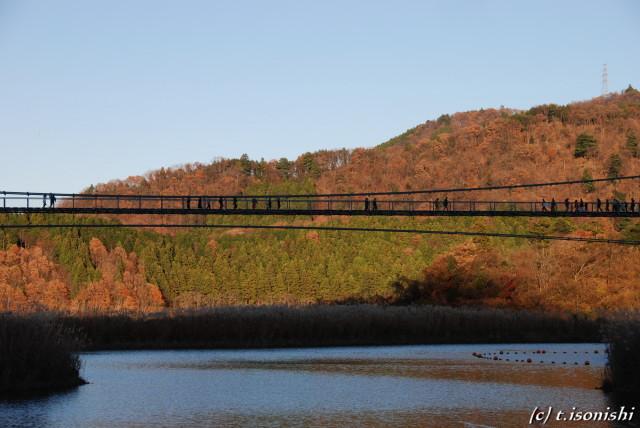 宮ヶ瀬湖畔・大つり橋(2008/12/7)