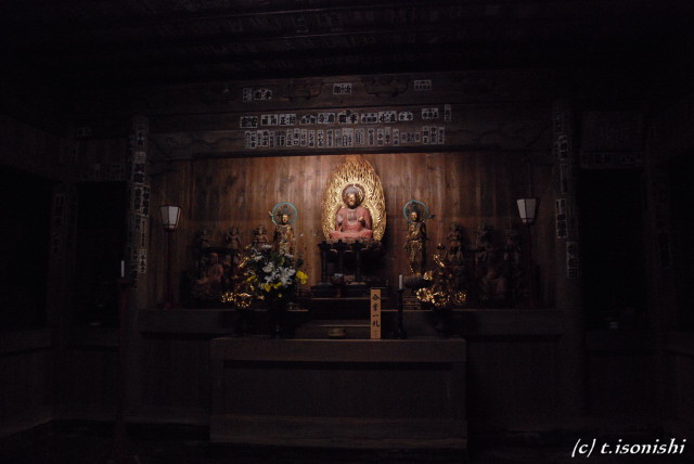 海蔵寺2(2008/11/3)