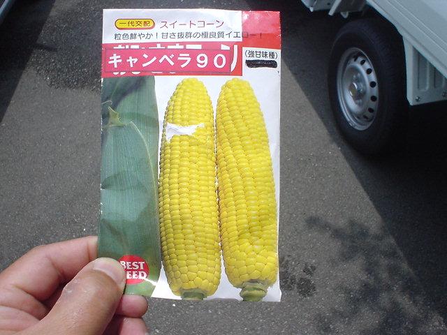 tane-toukibi