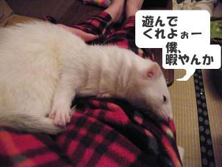 暇な健太郎090221-2