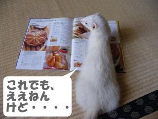 クッキング健太郎0908-1