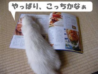 クッキング健太郎0908-2