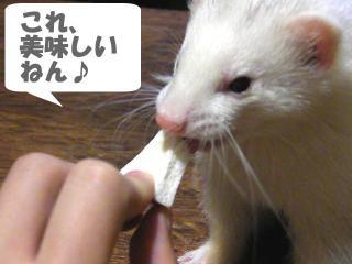 りんごと健太郎0908-4