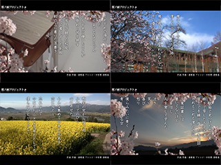 桜ノ雨PV