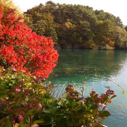2011-10-09-01.jpg