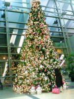 サンディエゴ空港のツリー