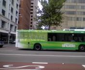 シドニー 無料 バス