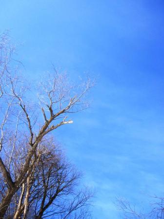 空、青いなーー