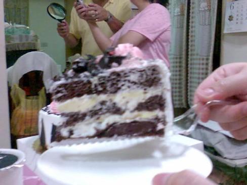 蛋糕斷面秀2