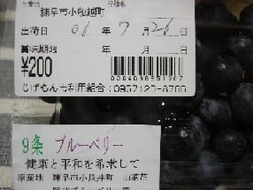 20060729235749.jpg