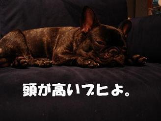 DSCsofa_jill.jpg