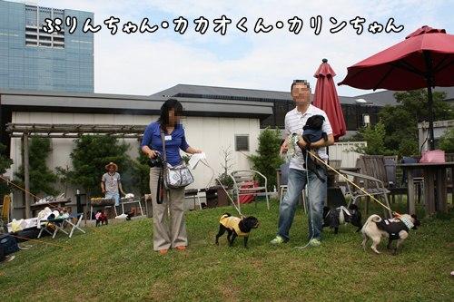 IMG_4534.jpg