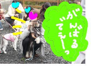 snap_jirokkosan_2008115204949.jpg