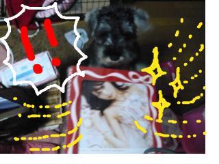 snap_jirokkosan_20081161017.jpg