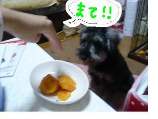 snap_jirokkosan_200811611511.jpg