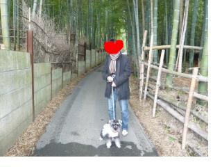 snap_jirokkosan_200812202049.jpg